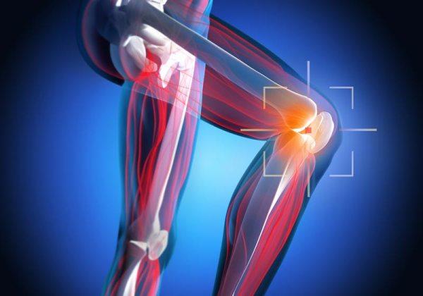 Рентген коленного сустава: что показывает, цена и фото